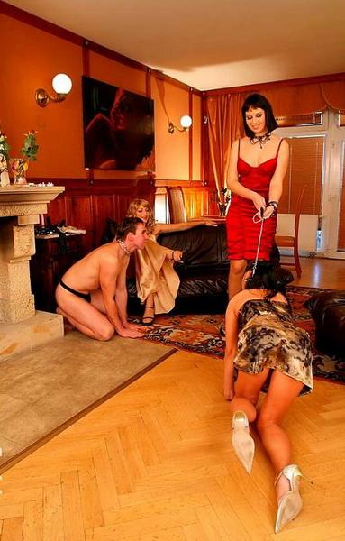 slave, couple, submissive, bdsm